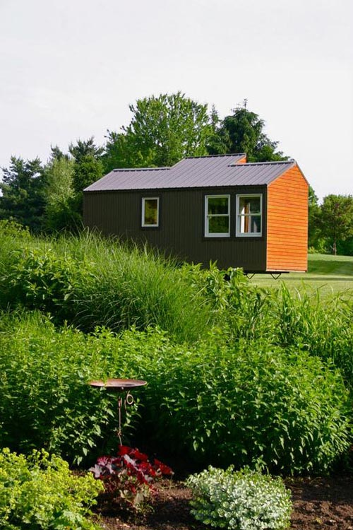 Tiny House in the Wild - Tall Man's Tiny House