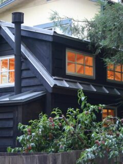 Charwood Cabin by Molecule Tiny Homes
