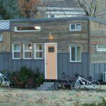Brown Bear by Alpine Tiny Homes