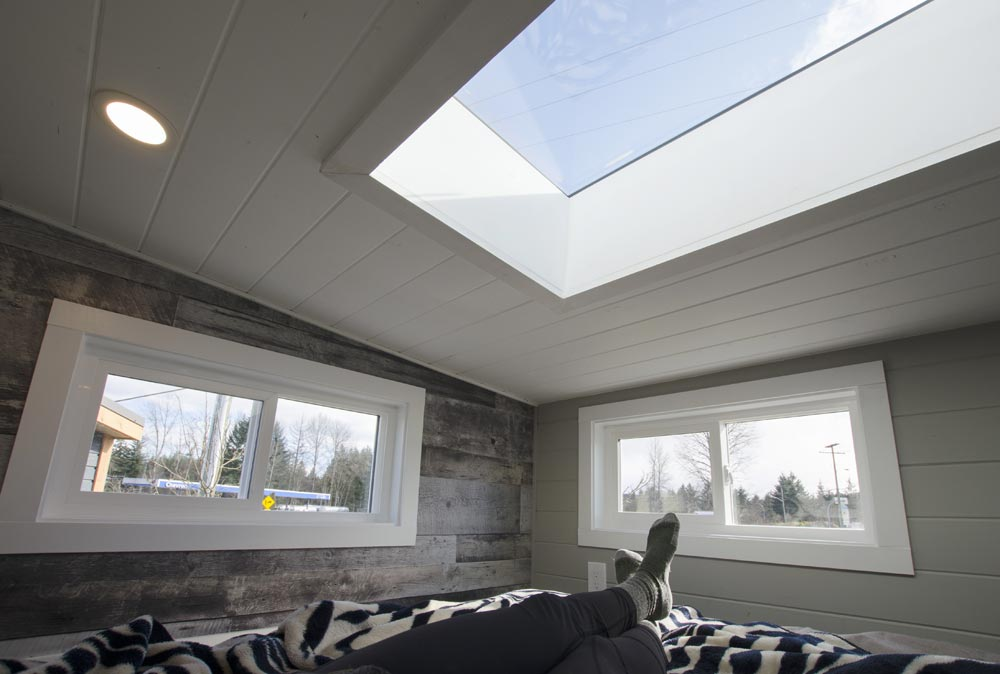 Skylight - Fox Sparrow by Rewild Homes