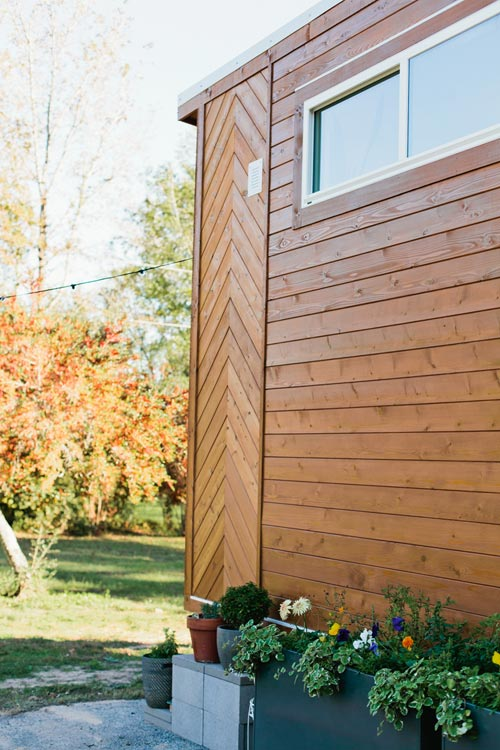 Arrow Design - Golden by American Tiny House