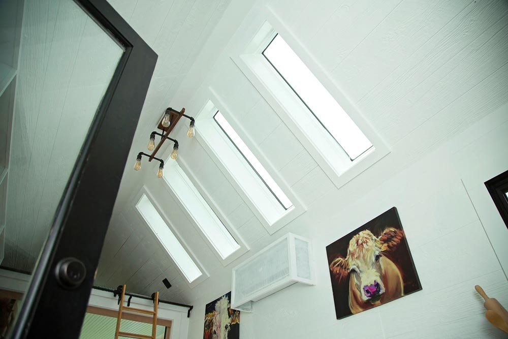 Skylights - Roost 36 by Perch & Nest