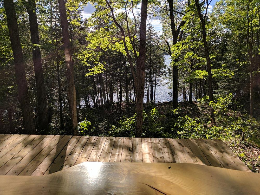 View Toward Lake - Auburn by Cabinscape