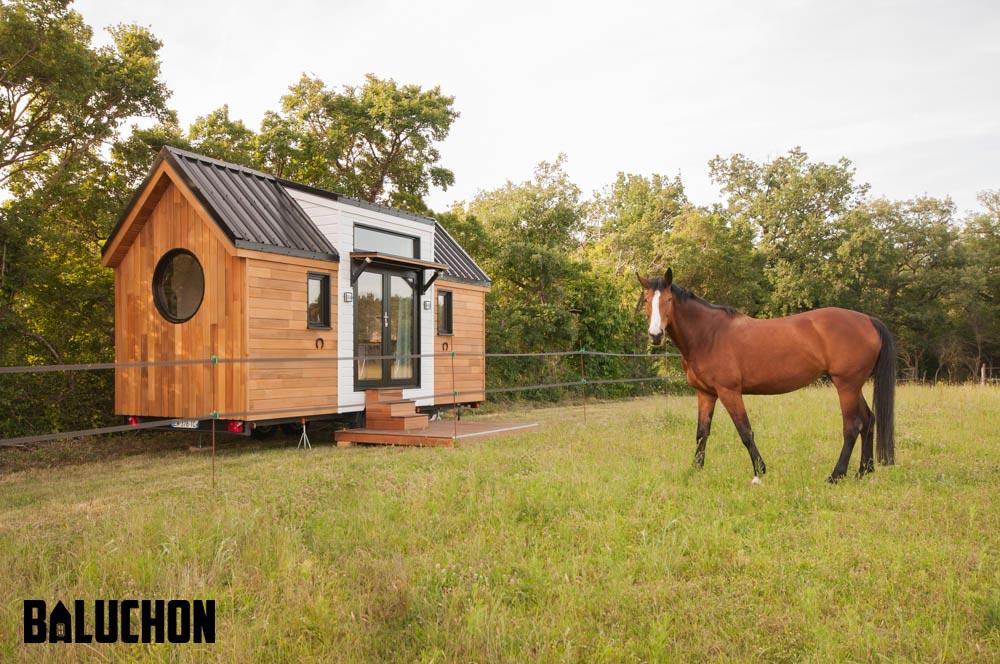 Horse Property - Ostara by Baluchon