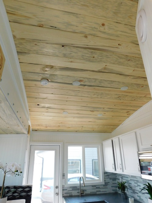 Beetle Kill Ceiling - Ozark by Tiny Idahomes