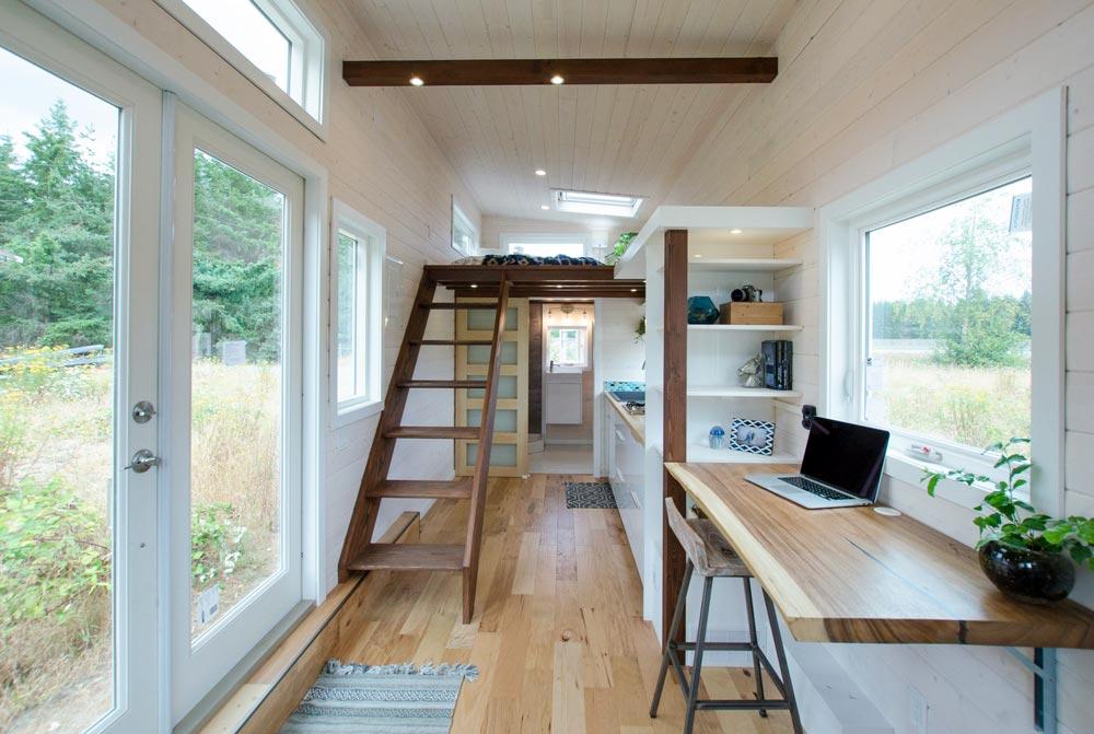 Bright Interior - Stellar Jay by Rewild Homes