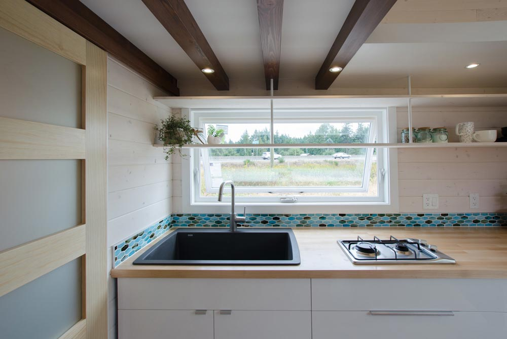 Kitchen Sink - Stellar Jay by Rewild Homes