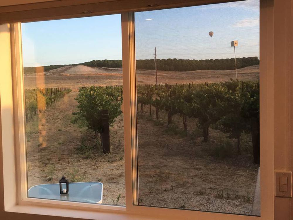 View From Bedroom - Temecula Wine Country Tiny Container Home