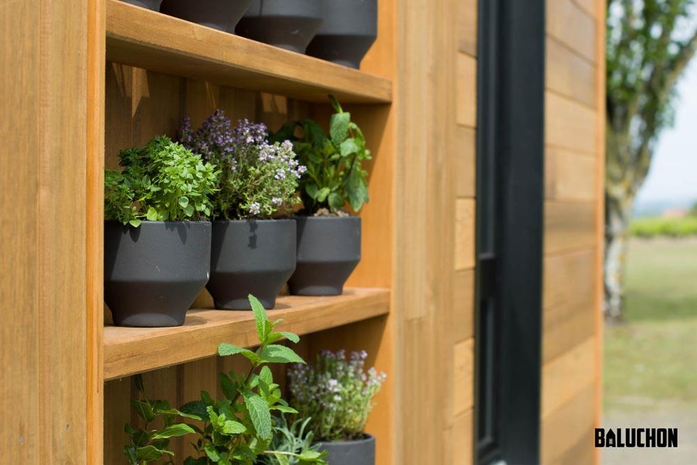 Herb Garden - Astrild by Baluchon